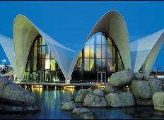 L'Oceánografic - Europas største akvarium