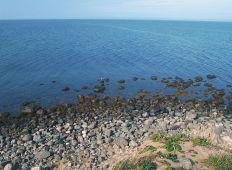 Kystleksikon #11 - Fyns hoved - Nordøstfyn