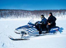 En arktisk totaloplevelse - Nordnorge – et af klodens koldeste miljøer