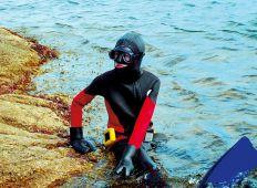 Dykningens Dag 2006 – landet rundt