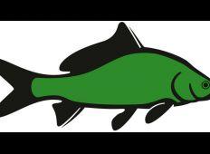 WWF-klumme – hva' for en fisk?