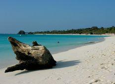 Zanzibar – fuld fart under overfladen