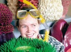 Birgitte Gjøtz – under overfladen