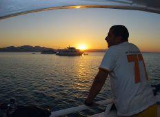 Livet på en liveaboard – en introduktion til safari på havet