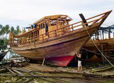 WWF-klumme – Havets vagtmænd