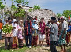 WWF-klumme – uden en ceremoni ændres intet