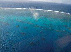 Great Barrier Reef – i en klasse for sig