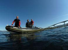 Saltstraumen – dykning med tidevandstabel