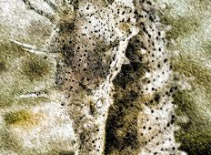 Portugal – Græsk mytologi og uudforskede rev