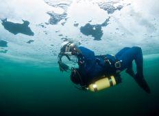 Isdyk i havet - En arktisk oplevelse