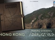 Fra Frodes logbog – Hong Kong