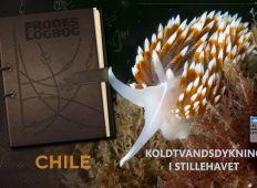 Fra Frodes Logbog – Chile