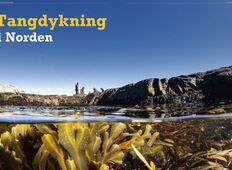 Tangdykning – i Norden