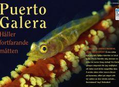 Puerto Galera – Håller fortfarande måtten