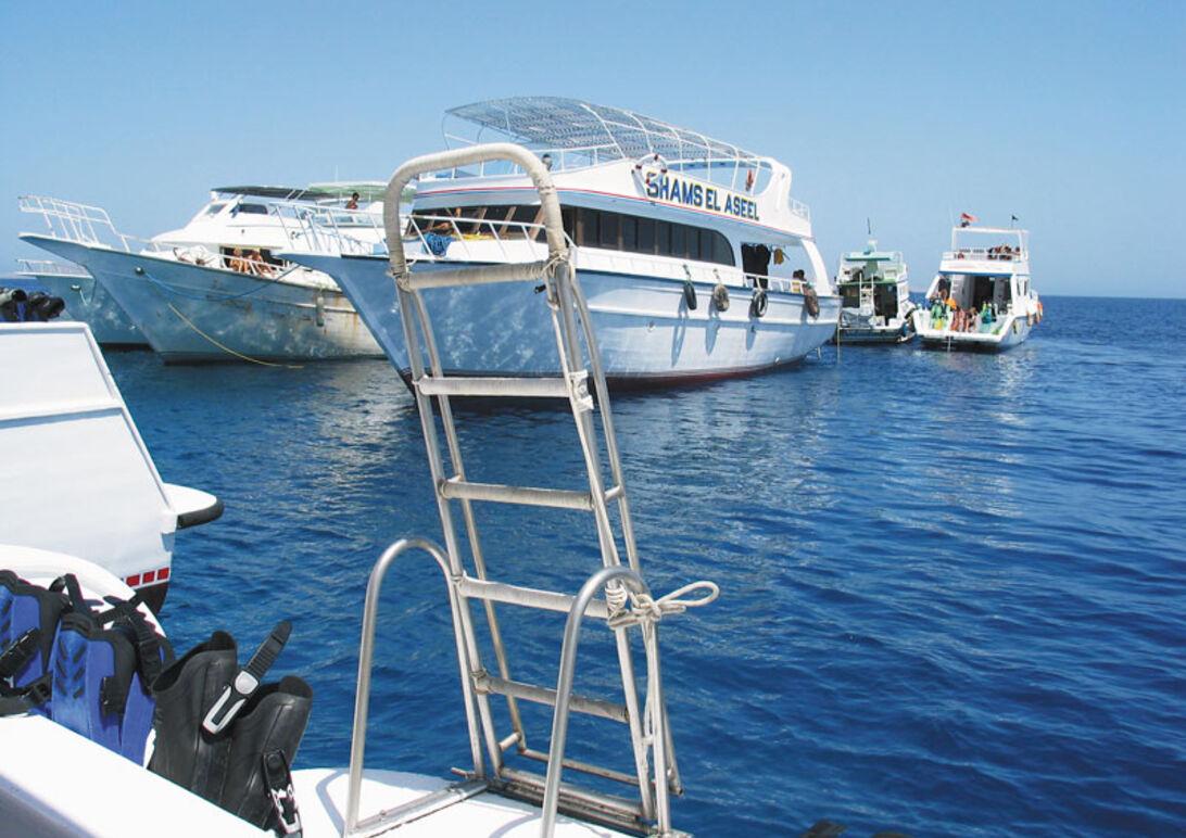 Hurghada - En guide i vådt og tørt