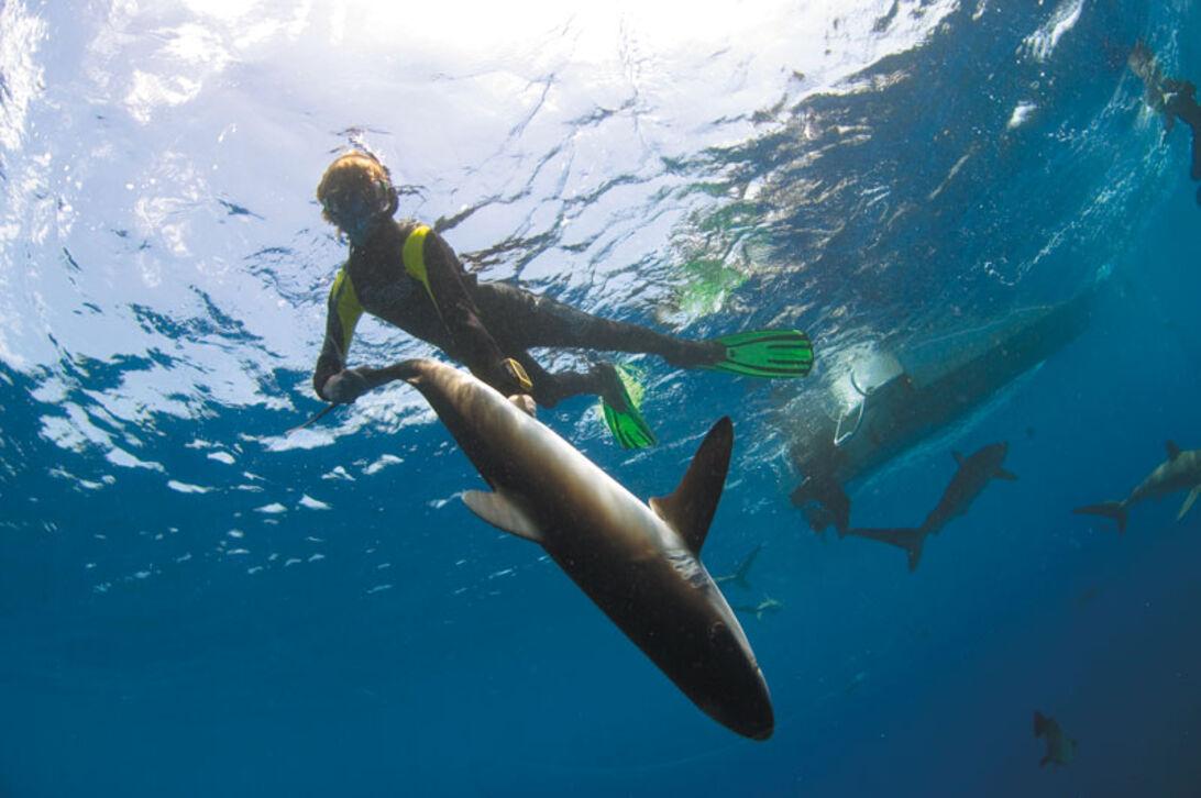 Scuba Libre - uovertrufne naturoplevelser på Cuba