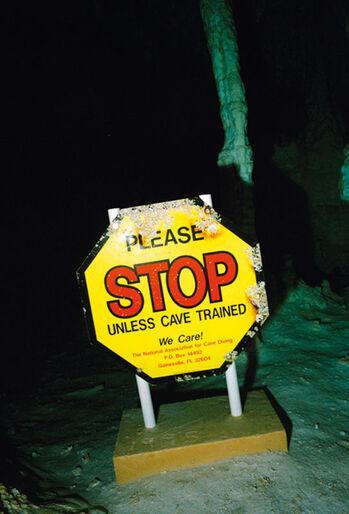 Stop - Hvis ikke du er hulemenneske