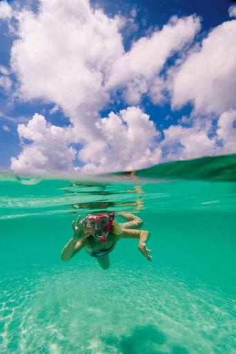 MIchael Jensen - dykning, et nødvendigt onde
