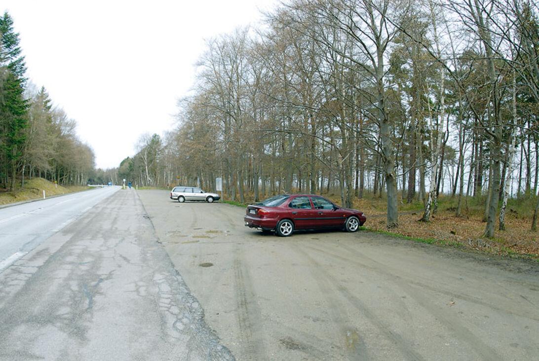 Kystlektion #32 – Hornbæk Plantage