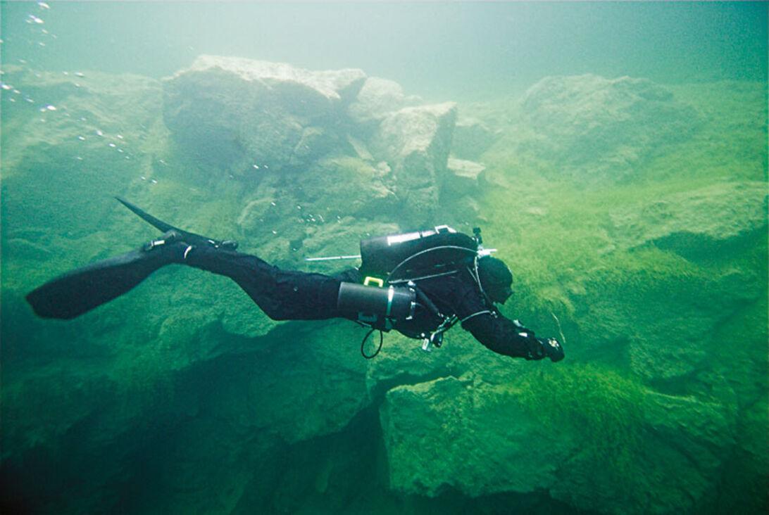 Fem fine finnespark – hvilken svømmestil er bedst til hvad?