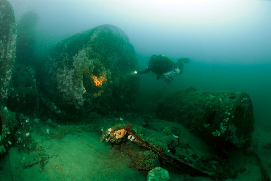 Nordsøen – et paradis for den tålmodige vragdykker
