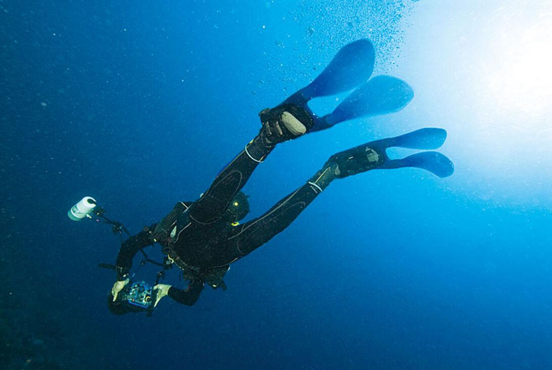 Flippede finner – svømmefødder er ikke hvad de har været