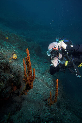 Santorini – vores mand i Atlantis
