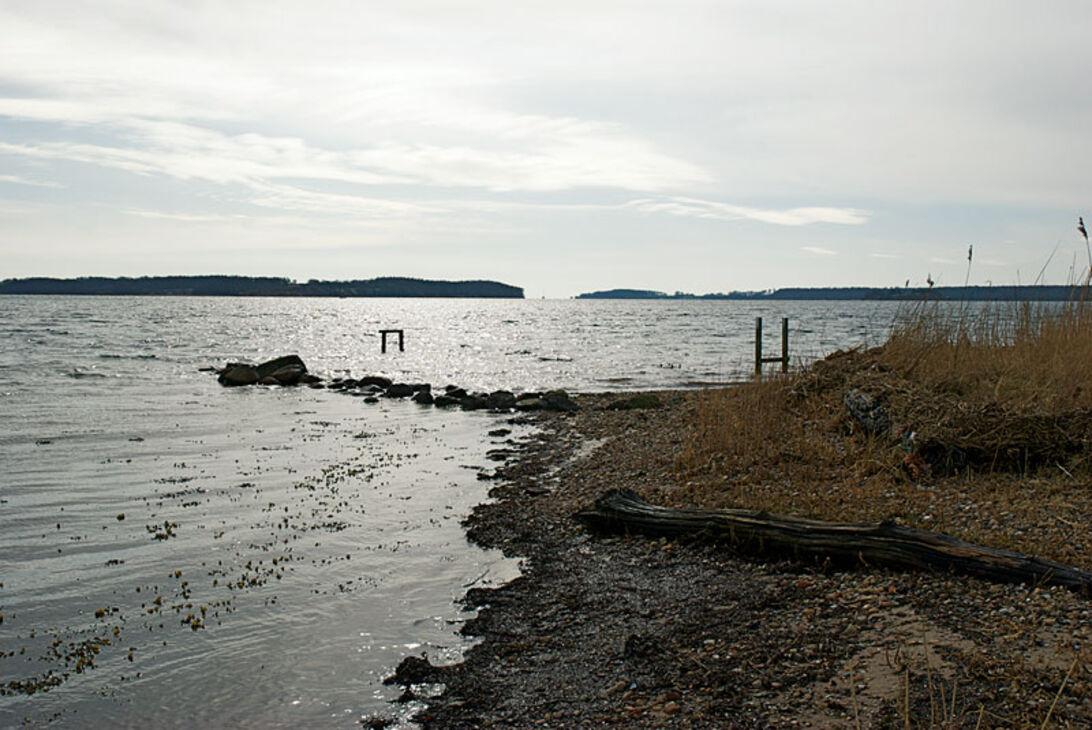 Kystleksikon #71 – Måle Strand Nordøstfyn