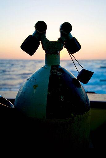 Simply the best – krydstogt i det sydlige Rødehav