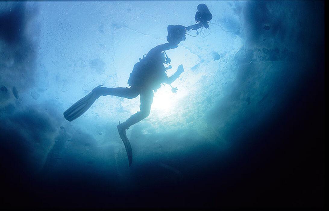 Skånekost –10 dejlige dyk i det sydlige Sverige