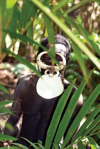 Hvor tiden står stille – dykning på Papua Ny Guinea