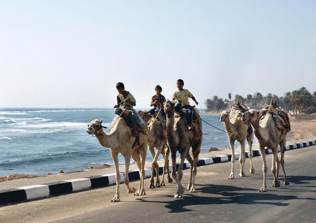 Dahab – CDWS præsenterer: Rødehavet fra nord til syd