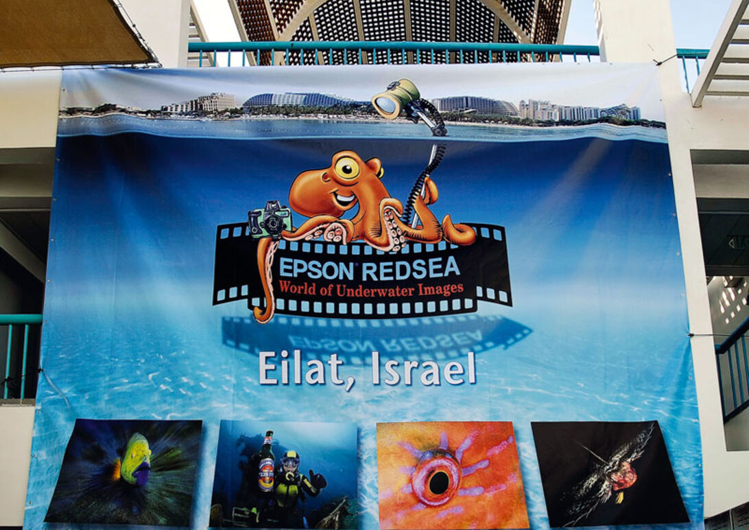 Eilat Shoot-Out 2009 – Rapport fra vinderne i DYK