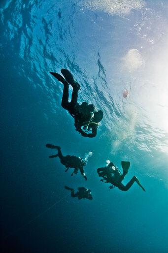 10 myter om dekompression – vi afliver de mest hårdnakkede