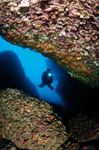 Sardinien – grotter, koraller og italienske lækkerier