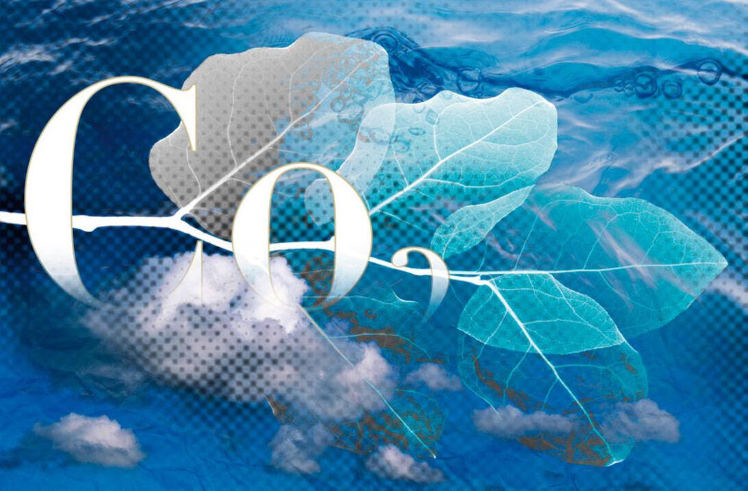 Kuldioxid – Den onde cirkel