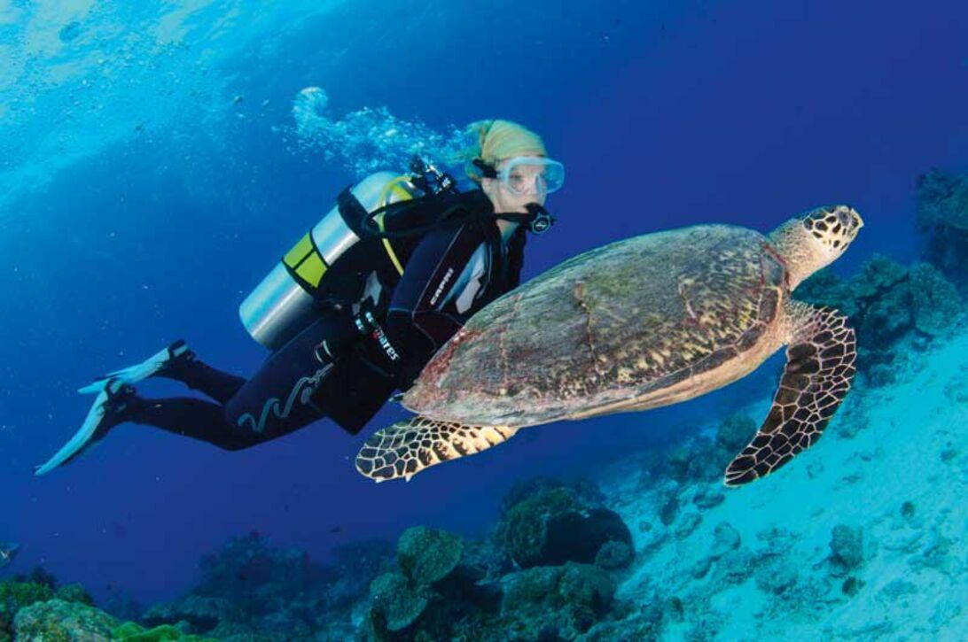 Similan Islands – stadig Thailands bedste dykkested