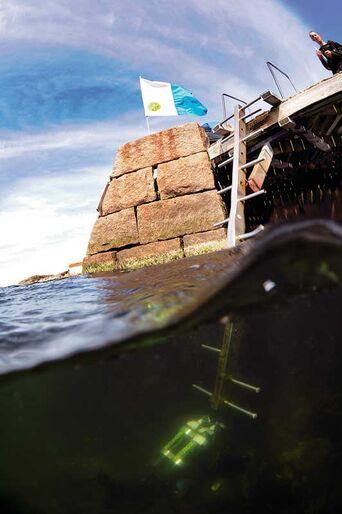Kursus i havbiologi – Med Gulmarsfjorden som skolegård