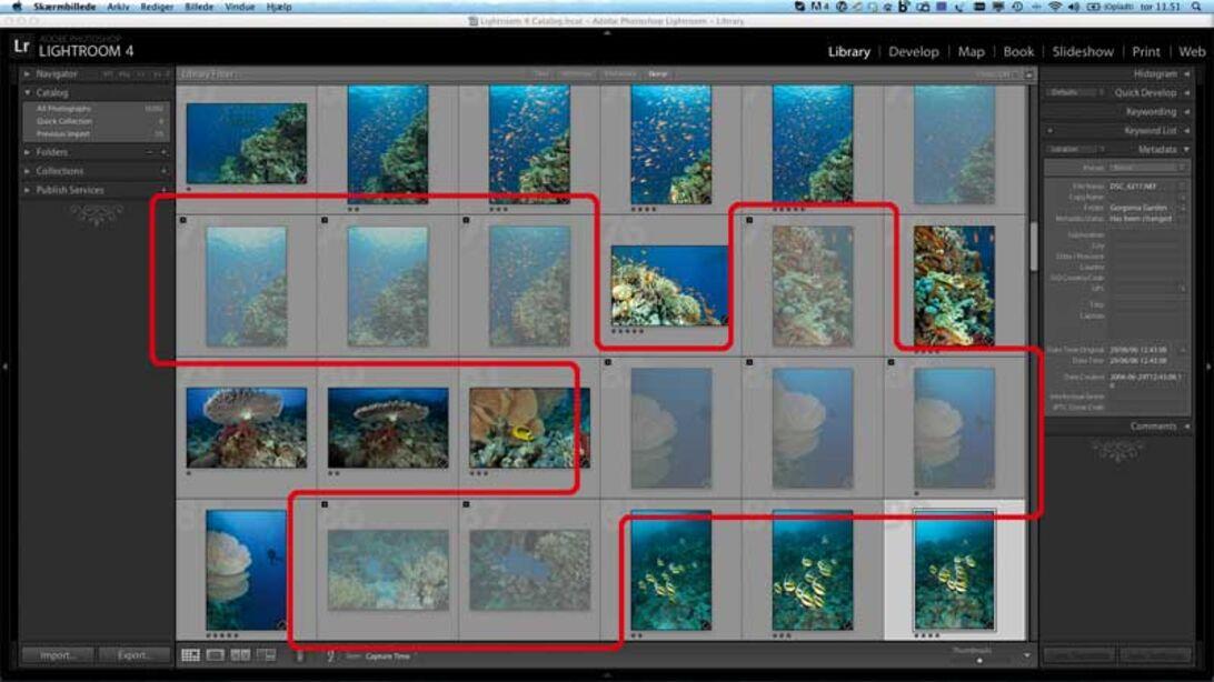 Markos fotoalmanak 3. del – arkiver