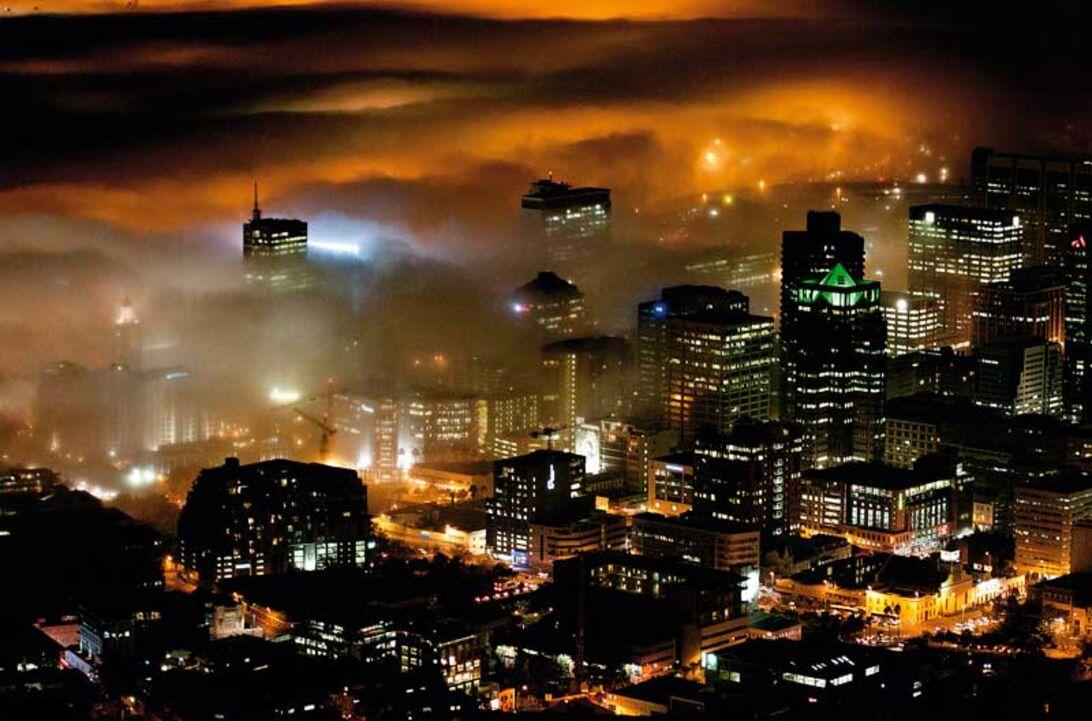 Sydafrika - Helt vildt