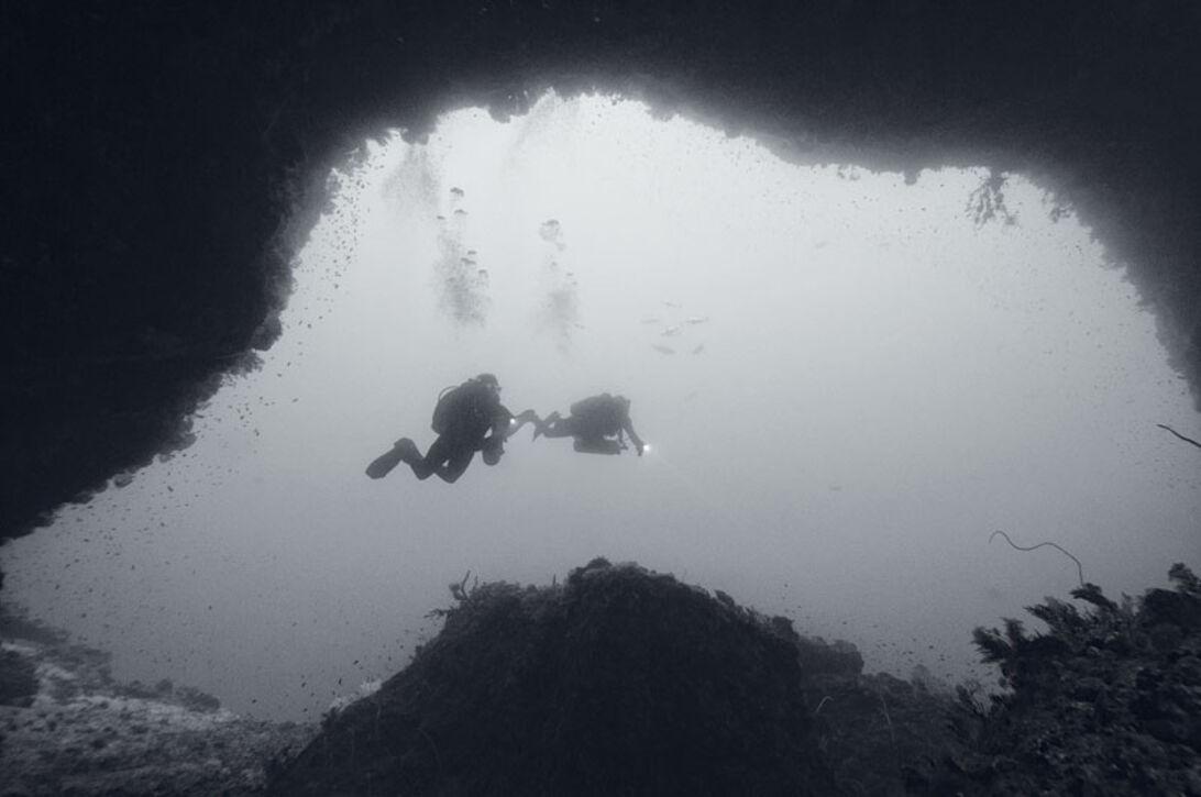Tek i troperne – dybere og længere i varmt vand