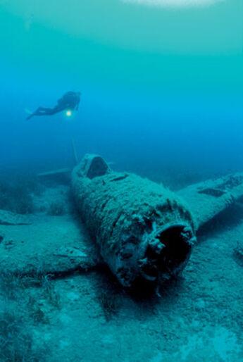 Korsika – bevingede vrag