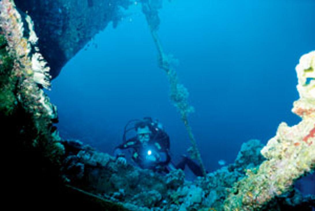 Lejrliv – Med Red Sea Diving Safari i det sydlige Rødehav