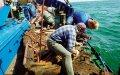 En jomfru i Østersøen – vragekspedition med National Geographic