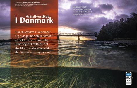 Artsdiversitet i Danmark