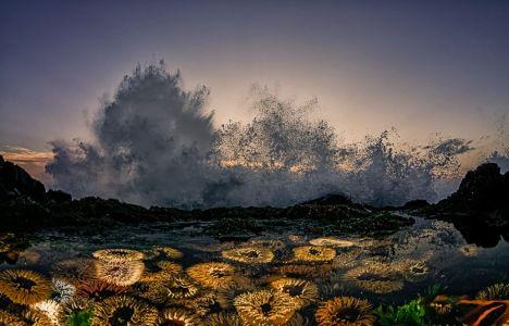 "© Geo Cloete. ""Above Water Seascapes"", Vinder 2020"