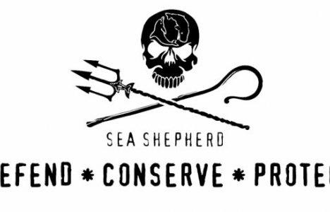Sea Sherperd.