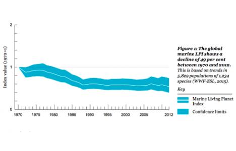 WWF rapporten er dyster læsning.