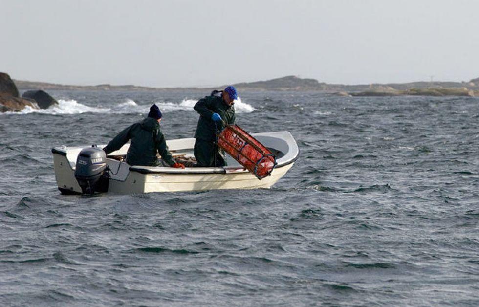 Danske fiskedåser i kinesiske supermarkeder