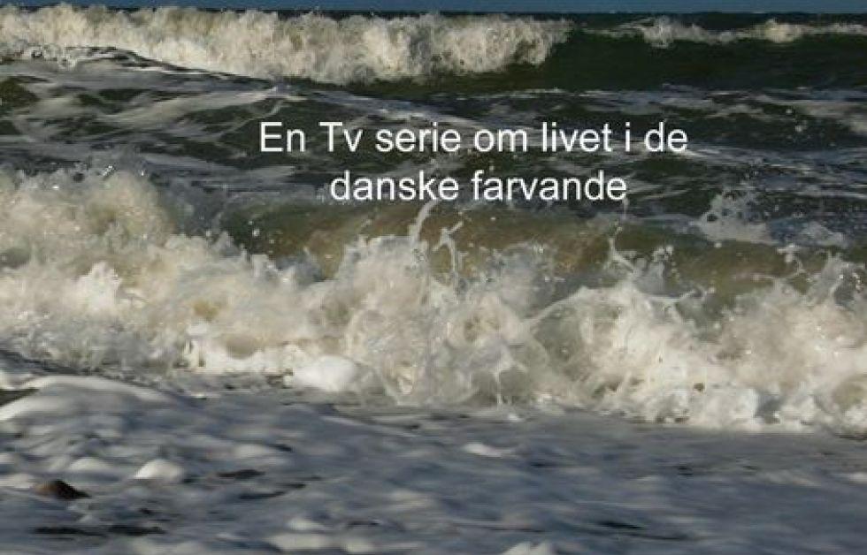 Et hav af liv – nu på dvd